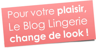 Le Blog Lingerie change de look