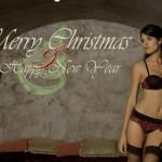 Joyeux Noël de LingaDore