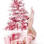 Joyeux Noël de La Lilouche