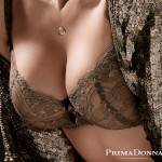 Lingerie PrimaDonna Midnight in Paris Golden Shadow - automne/hiver 2013